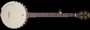 gretsch dixie banjo