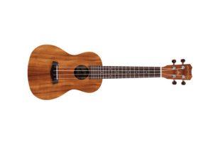 Islander MC-4 mahogany concert ukulele
